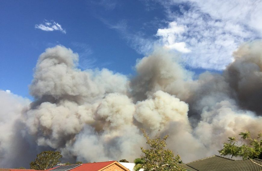For those affected by bushfires