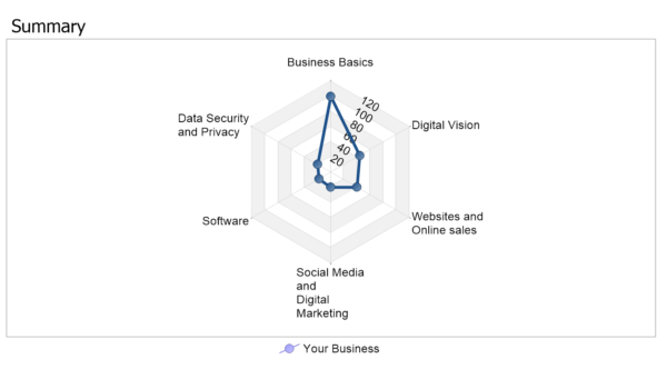 Gain a pictorial view of your businesses digital capabilities